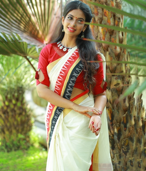 Red Rawsilk Blouse Heavily Embeliished with Ikat Border Saree